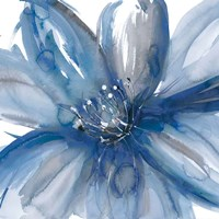 Blue Beauty I Fine Art Print