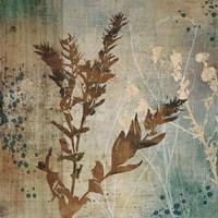 Organic Elements II Fine Art Print