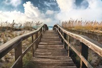 Path To Paradise Fine Art Print
