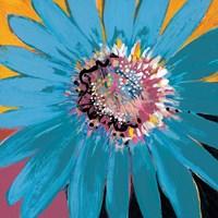 Sunshine Flower II Fine Art Print