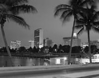 Night View Skyline With Palm Trees Miami Florida Fine Art Print