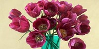 Red Tulips in a Glass Vase (detail) Fine Art Print