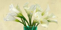 White Callas in a Glass Vase (detail) Fine Art Print