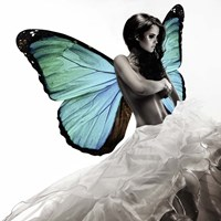 Winged Beauty #1 Fine Art Print