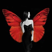 Winged Beauty #2 Fine Art Print