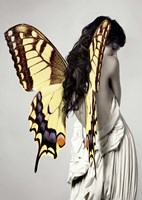 Winged Beauty #3 Fine Art Print