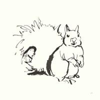 Line Squirrel Fine Art Print