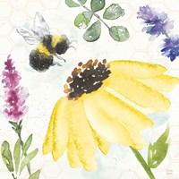 Bee Harmony III Fine Art Print