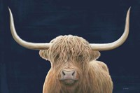 Highland Cow Navy Fine Art Print