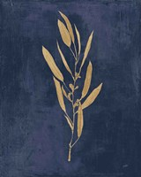 Botanical Study I Gold Navy Fine Art Print