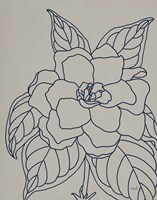 Gardenia Line Drawing Gray Crop Fine Art Print