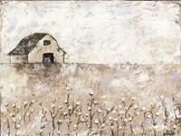 Cotton Farms Fine Art Print