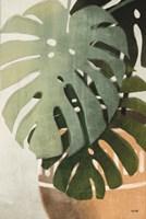 Monstera Leaves Fine Art Print