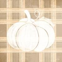 Plaid Pumpkin I Fine Art Print
