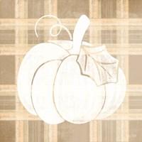 Plaid Pumpkin II Fine Art Print