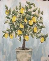 Lovely Lemons Fine Art Print