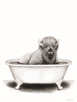 Bison in Tub Fine Art Print