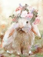 Bunny Sophia Fine Art Print