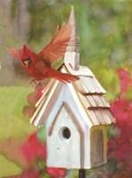 Cardinal Bird House Fine Art Print