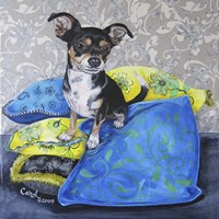 Chihuahua Pillows II Fine Art Print