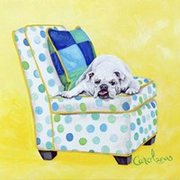 Bulldog on Polka Dots Framed Print