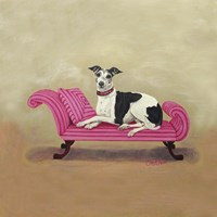 Italian Greyhound on Pink Fine Art Print
