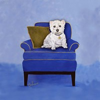 Westie on Blue Framed Print