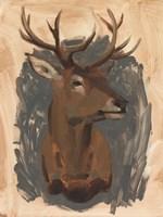 Red Deer Stag I Fine Art Print