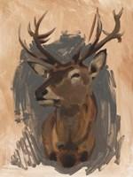 Red Deer Stag II Fine Art Print