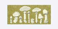 Forest Fungi I Fine Art Print