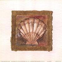 """Fan Shell by Charlene Winter Olson - 6"""" x 6"""" - $10.49"""