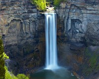 Waterfall Portrait I Fine Art Print