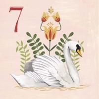 Twelve Days VII Fine Art Print