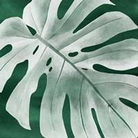 Velvet Palm IV Fine Art Print