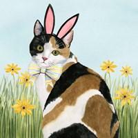Easter Cats I Fine Art Print