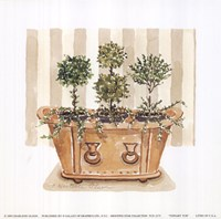 Topiary Tub Fine Art Print