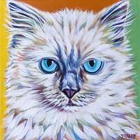 Classy Cat II Fine Art Print
