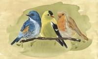 Bird Perch I Fine Art Print