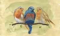 Bird Perch II Fine Art Print