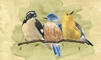 Bird Perch IV Fine Art Print