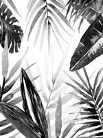 Jungle Walk I Fine Art Print