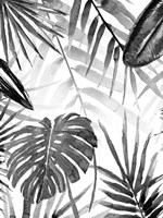 Jungle Walk II Fine Art Print