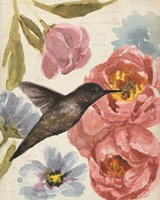 Nectar's Sip I Fine Art Print
