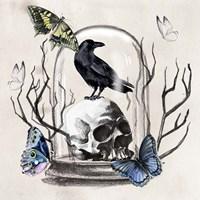 Nevermore II Fine Art Print