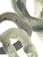 Concentric Lichen VI Fine Art Print