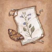 Mazus Fine Art Print