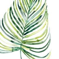 Tropical Jewel IX Fine Art Print