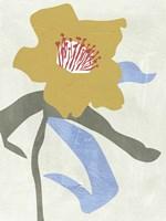 Lenten Rose I Fine Art Print