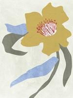 Lenten Rose II Fine Art Print