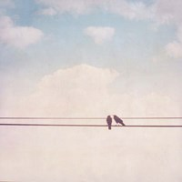 Birds on Wires II Fine Art Print